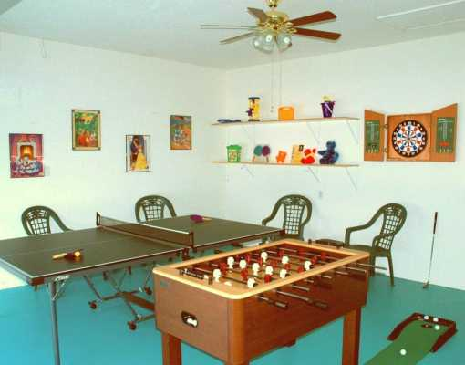 8103 Fan Palm Windsor Palms Game Room