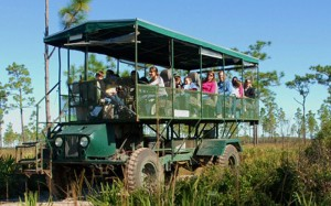 florida-eco-safari-web
