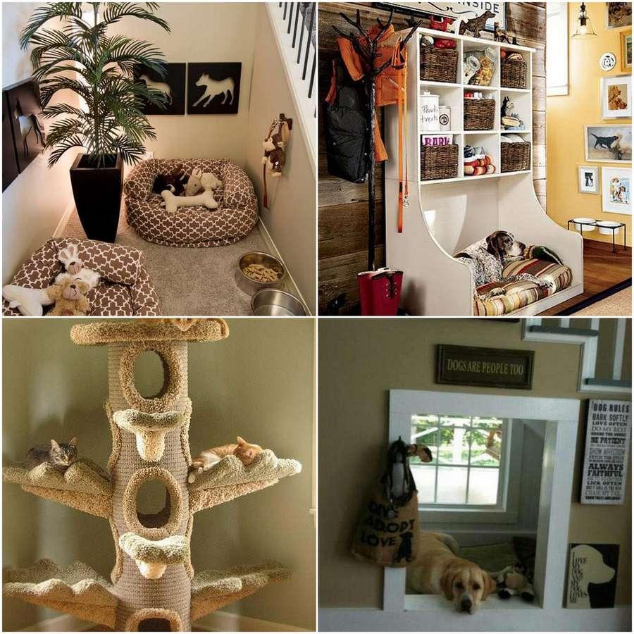 Orlando avenue blog - Make house pet friendly ...