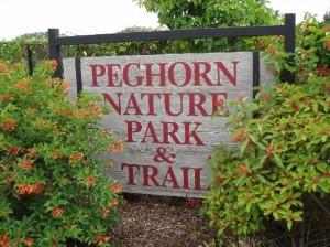 peghorn